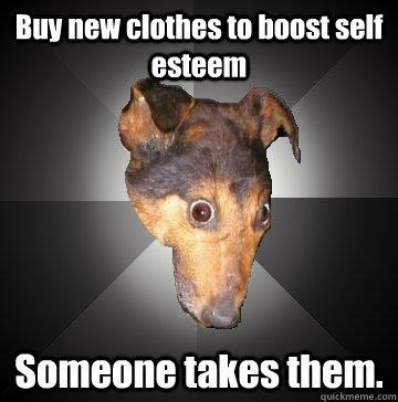 Buy new clothes to boost self esteem Someone takes them.  Depression Dog