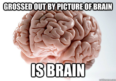 Grossed out by picture of brain is brain - Grossed out by picture of brain is brain  Scumbag Brain