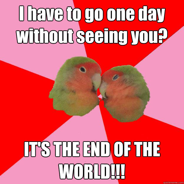 I have to go one day without seeing you? IT'S THE END OF THE WORLD!!!