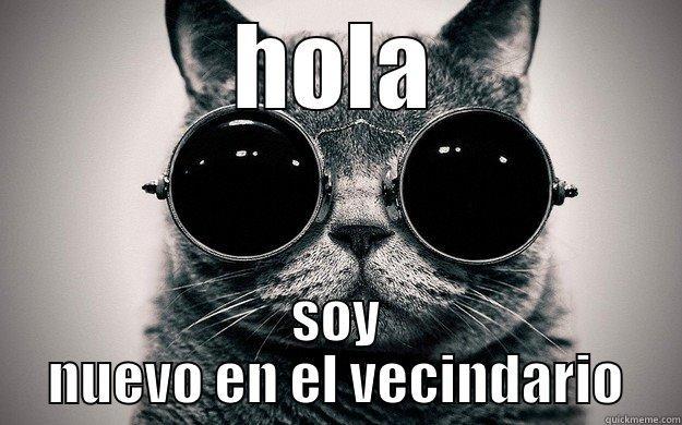 HOLA SOY NUEVO EN EL VECINDARIO Morpheus Cat Facts