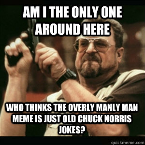 Am i the only one around here Who thinks the overly manly man meme is just old chuck norris jokes? - Am i the only one around here Who thinks the overly manly man meme is just old chuck norris jokes?  Misc