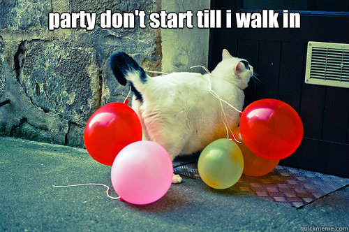 party don't start till i walk in