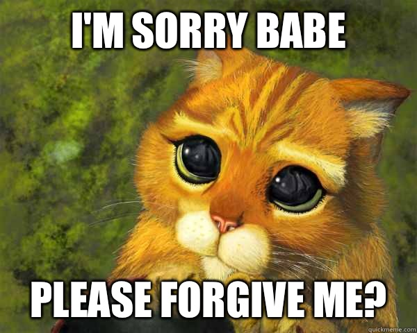 I'm sorry babe Please Forgive me?
