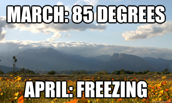 March: 85 degrees april: freezing - March: 85 degrees april: freezing  Scumbag Weather