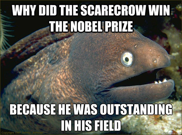 Why did the scarecrow win the nobel prize because He was outstanding in his field Caption 3 goes here  Bad Joke Eel