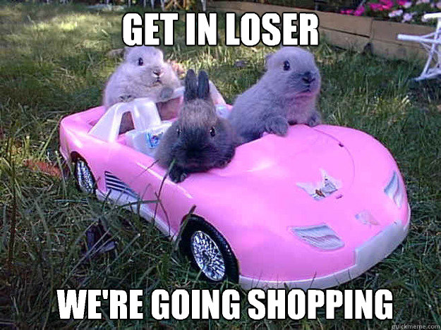 Get In Loser Were Going Shopping Get In Loser Quickmeme