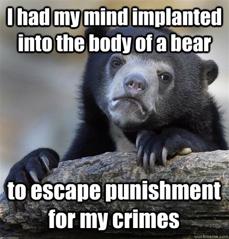 I had my mind implanted into the body of a bear to escape punishment for my crimes - I had my mind implanted into the body of a bear to escape punishment for my crimes  Confession Bear