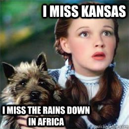 I miss Kansas I miss the rains down in Africa - I miss Kansas I miss the rains down in Africa  Toto song dog
