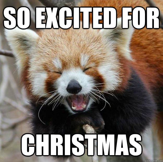 so excited for christmas - so excited for christmas  Red panda