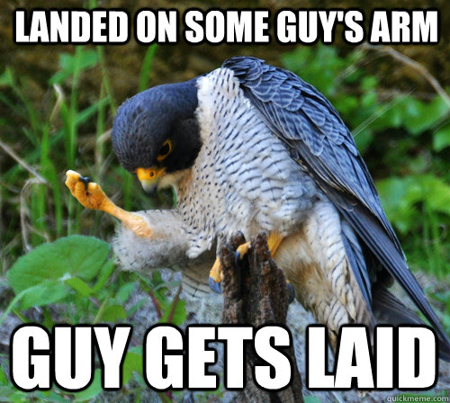 Landed on some guy's arm Guy gets laid