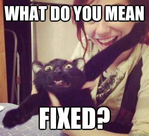 What do you mean Fixed? - What do you mean Fixed?  My Cat is Going to the Vet Today