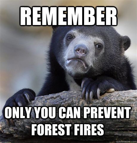 remember only you can prevent forest fires - remember only you can prevent forest fires  Confession Bear