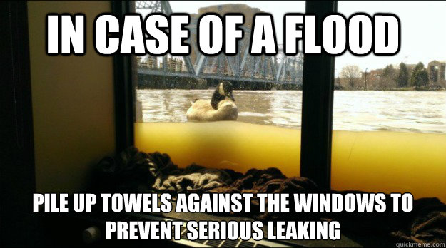 in case of a flood  pile up towels against the windows to prevent serious leaking - in case of a flood  pile up towels against the windows to prevent serious leaking  Misc