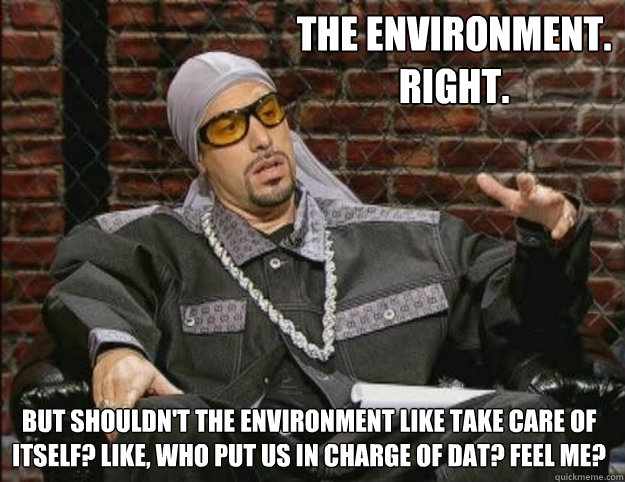 The environment. Right. But shouldn't the environment like take care of itself? Like, who put us in charge of dat? Feel me?