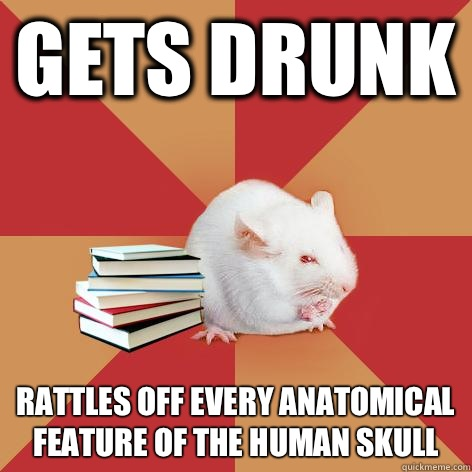 Gets drunk Rattles off every anatomical feature of the human skull  - Gets drunk Rattles off every anatomical feature of the human skull   Science Major Mouse