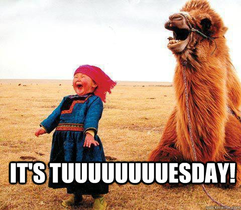 It's tuuuuuuuuesday!  Its Tuesday