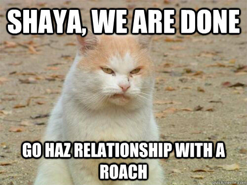 shaya, we are done go haz relationship with a roach