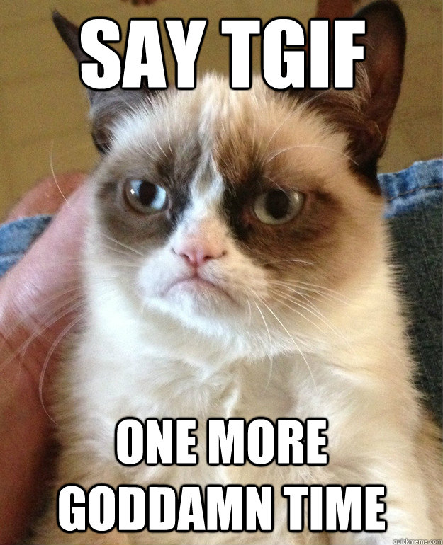 Say TGIF One more goddamn time - Say TGIF One more goddamn time  Grumpy Cat