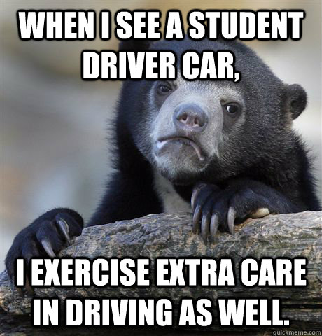 When I see a student driver car, I exercise extra care in driving as well. - When I see a student driver car, I exercise extra care in driving as well.  Confession Bear