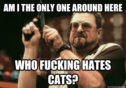 Am I the only one around here who fucking hates cats? - Am I the only one around here who fucking hates cats?  Am I the only one