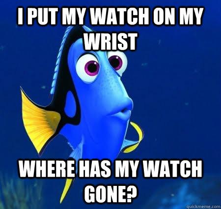 I put my watch on my wrist Where has my watch gone?  Forgetful Dory
