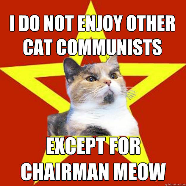 I do not enjoy other cat communists except for chairman meow  Lenin Cat