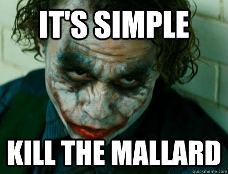 It's Simple kill the Mallard