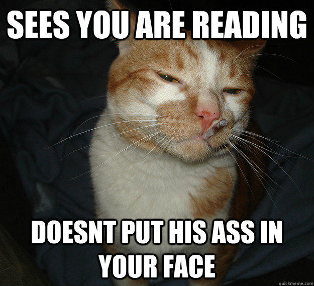 Sees you are reading doesnt put his ass in your face