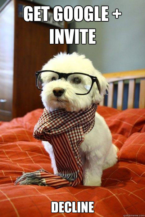 Get Google + Invite decline  Hipster Dog