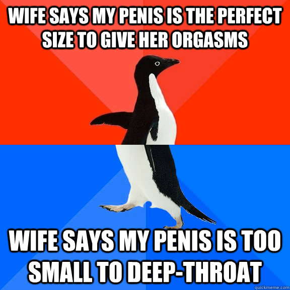 wife says my penis is the perfect size to give her orgasms wife says my penis is too small to deep-throat - wife says my penis is the perfect size to give her orgasms wife says my penis is too small to deep-throat  Socially Awesome Awkward Penguin
