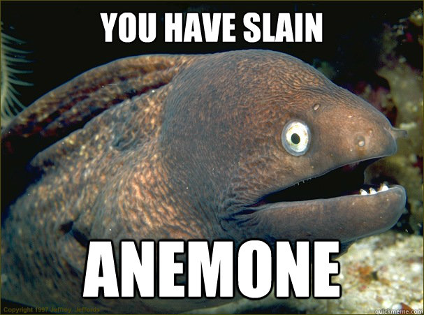 you have slain  anemone - you have slain  anemone  Bad Joke Eel