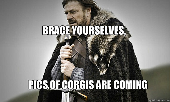 bRACE YOURSELVES, Pics of Corgis are coming