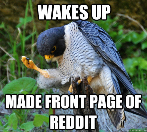 WAKES UP MADE FRONT PAGE OF REDDIT