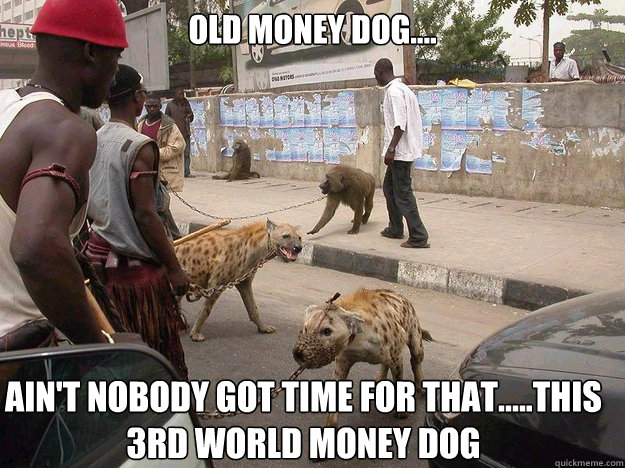 old money dog.... Ain't Nobody Got Time for That.....this 3rd world money dog - old money dog.... Ain't Nobody Got Time for That.....this 3rd world money dog  Misc