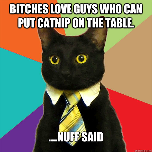 Bitches love guys who can put catnip on the table. ....nuff said - Bitches love guys who can put catnip on the table. ....nuff said  Business Cat