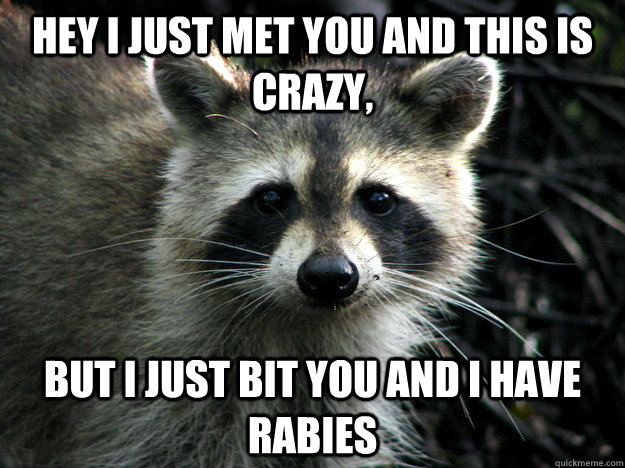 Hey I just met you and this is crazy, but i just bit you and i have rabies