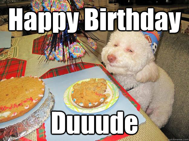 Happy Birthday Duuude  Stoned Birthday Dog