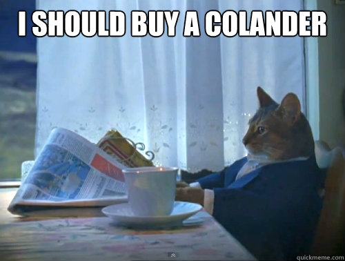 I should buy a colander  - I should buy a colander   The One Percent Cat