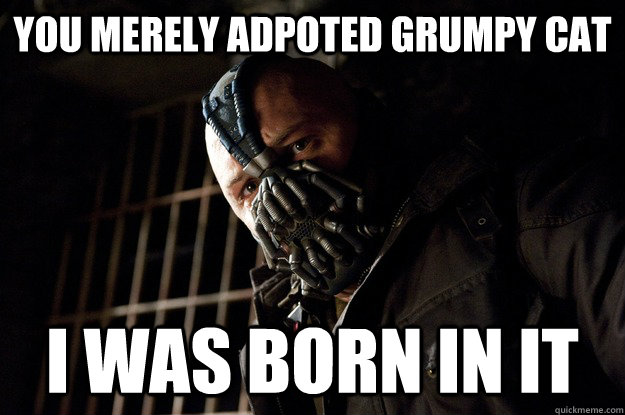 You merely adpoted grumpy cat I was born in it - You merely adpoted grumpy cat I was born in it  Angry Bane