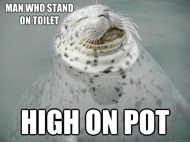 High on pot man who stand on toilet - High on pot man who stand on toilet  Zen Seal