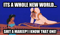 Its a whole new world... Shit a mareep! I know that one! - Its a whole new world... Shit a mareep! I know that one!  aladdin