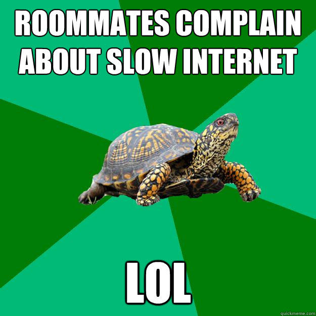 roommates complain about slow internet lol