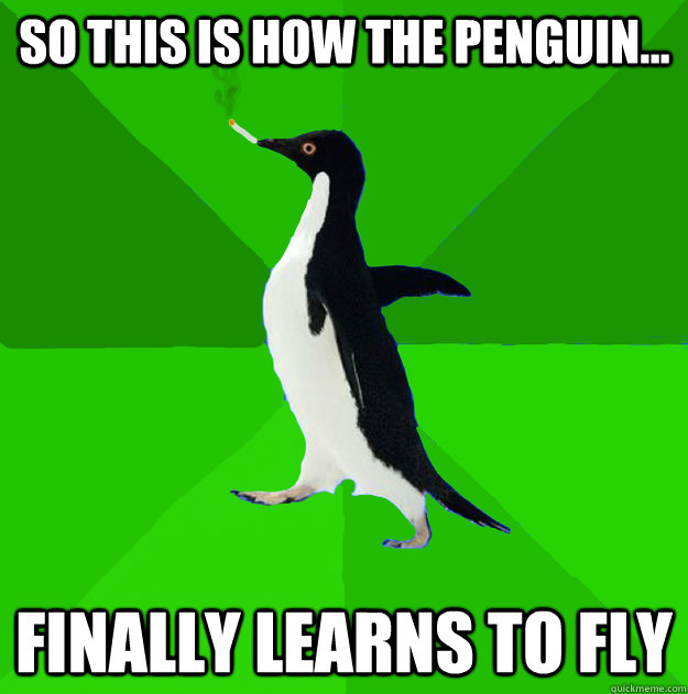 SO this is how the penguin... finally learns to fly