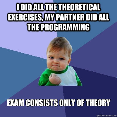 I did all the theoretical exercises, my partner did all the programming exam consists only of theory - I did all the theoretical exercises, my partner did all the programming exam consists only of theory  Success Kid