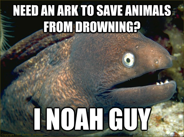 Need an ark to save animals from drowning? I noah guy - Need an ark to save animals from drowning? I noah guy  Bad Joke Eel