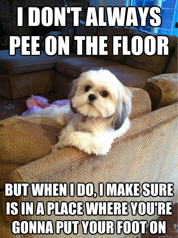 I don't always pee on the floor but when i do, i make sure is in a place where you're gonna put your foot on