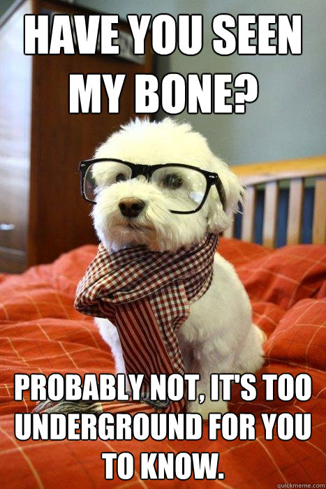 Have you seen my bone? Probably not, it's too underground for you to know.  Hipster Dog