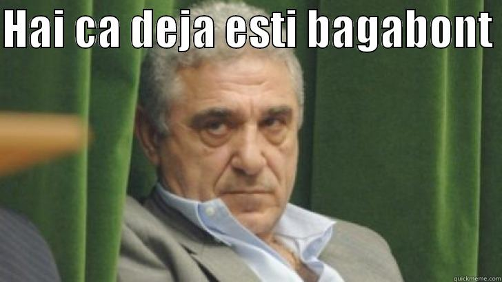 Modern Romanian Mafia - HAI CA DEJA ESTI BAGABONT   Misc
