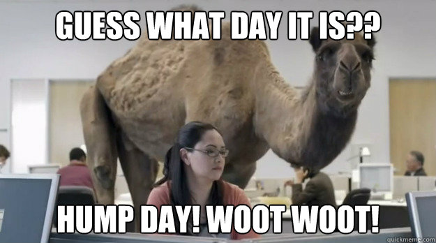 Guess what day it is?? hump day! woot woot!