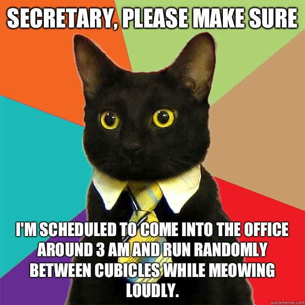 Secretary, please make sure  I'm scheduled to come into the office around 3 am and run randomly between cubicles while meowing loudly.  - Secretary, please make sure  I'm scheduled to come into the office around 3 am and run randomly between cubicles while meowing loudly.   Business Cat